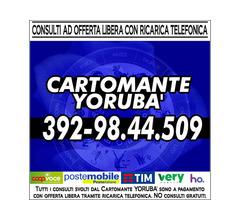 Oroscopi - tarocchi - ____Studio di Cartomanzia Cartomante Yoruba'____