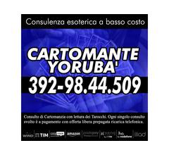 CARTOMANZIA AL TELEFONO A BASSO COSTO: IL CARTOMANTE YORUBA'