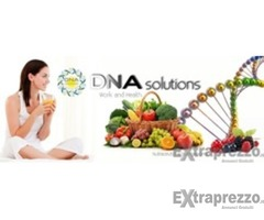 Lavora on line con DNA solutions!