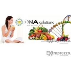 Lavora on line con DNA solutions!