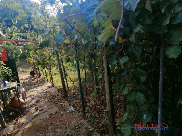 Case - Terreno agricolo vicino al paese per orto olivi e frutteto