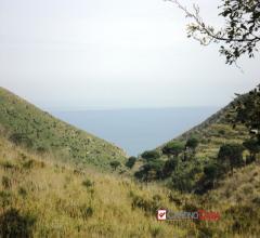 Sparta', panoramico terreno di  6400 mq circa