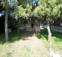 Case - Villa con taverna e ampio terreno in località torre guaceto