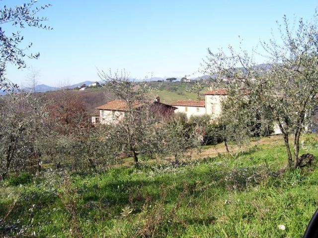 Azienda agricola e vitivinicola - colline di lucca
