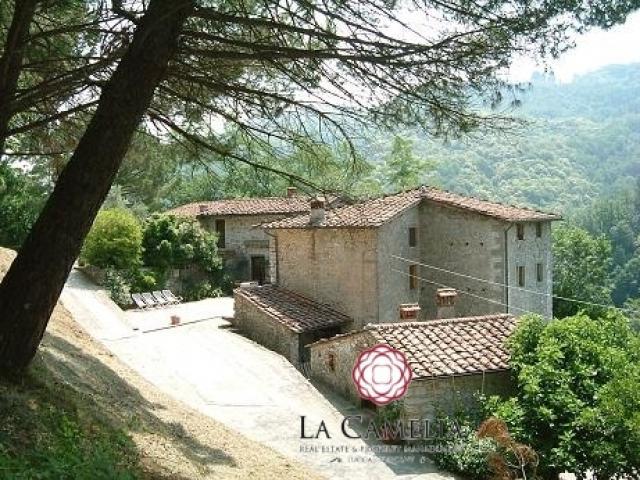 Borgo toscano come attività di b&b - lucca colline -