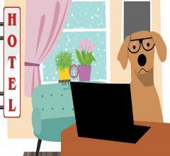 Cedesi gestione hotel 2 stelle - viareggio