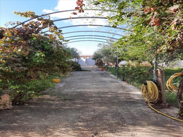 Terreno edificabile in vendita a trapani via salemi