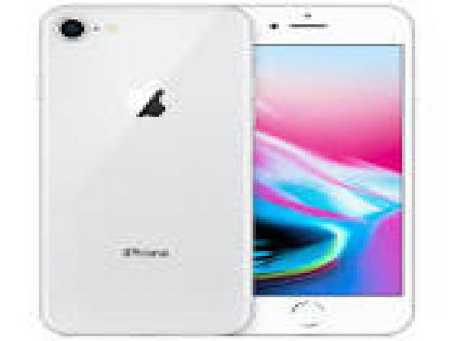 Telefonia - accessori - Beltel - apple iphone 8 64gb tipo occasione
