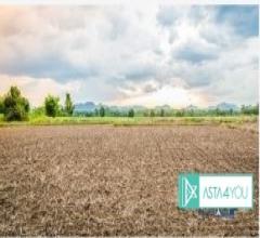Terreno agricolo - via cascina ginibissa - 20081 abbiategrasso (mi)