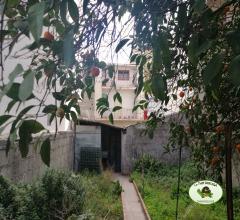 Ampia casa singola con giardino e garage