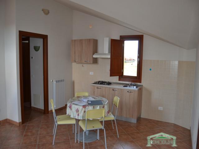 Case - Appartamento in affitto a monsummano terme