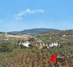 Azienda vitivinicola agrituristica a conduzione biologica