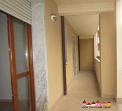 Carrara appartamenti di varie tipologie