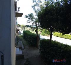 Rosignano marittimo -  grande appartamento  panoramico con  giardino