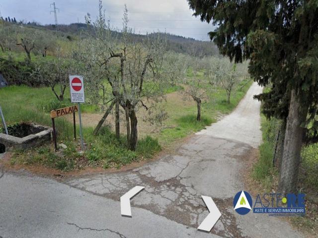 Case - Abitazione in villini - loc. morello, via di palaia n. 5/e