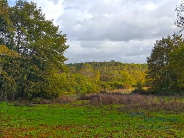Case - Terreno agricolo - località badesse - monteriggioni (si)