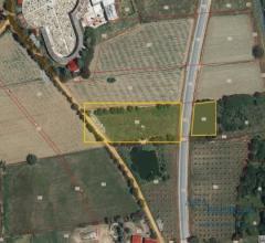 Terreno  agricolo- via del porto e sp 327 e sp327 - foiano della chiana (ar)