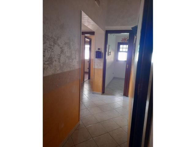 Case - Residenziale - vendita appartamento - noce