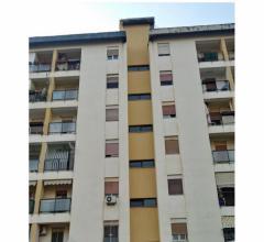 Residenziale - locazione appartamento - università