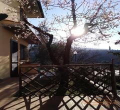 Case - Appartamento con giardino piano terra