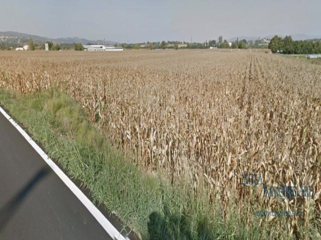 Terreno edificabile - via fiorentina, vocabolo le case - monte san savino (ar)
