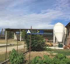 Azienda agricola - cascina butiotti snc